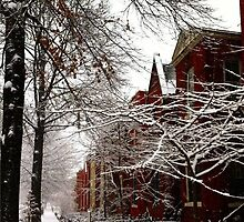 A Snowy Day on Capital Hill  by shawneelc