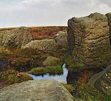 Thimble Stones by WatscapePhoto