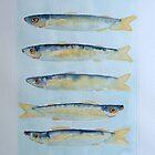 sardine alla griglia © patricia vannucci 2008  by PERUGINA