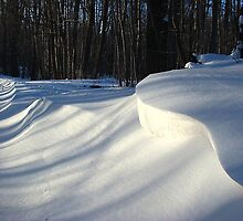 Snowdrifts by Linda Marlowe