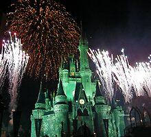 NYE Fireworks at the Magic Kingdom 2 by Angela Lance