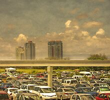Theme Park Car Park by Paul Vanzella