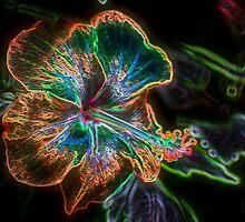 Fantasyland Hibiscus by SmilinEyes