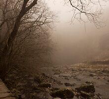 Mystical by Duncan Payne