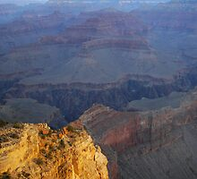 Dawn Light, Grand Canyon by Stephen Vecchiotti