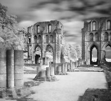Roche Abbey, Yorkshire by Stephen Taylor, LRPS