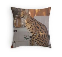 Betty Crocker Throw Pillow