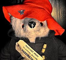 Paddington's Hat by missmoneypenny