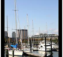 harbor by reneegw