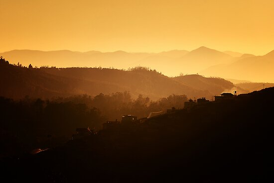 The Nilgiris - Dawn by Vikram Franklin