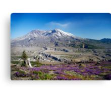 Mount St Helens Canvas Print