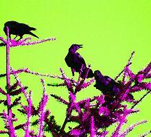 Three Crows by Leanne  Thomas