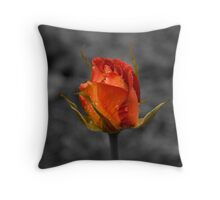 Solitary rose. Throw Pillow