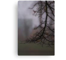 Weeping in the mist Canvas Print