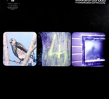 Boards Of Canada - In A Beautiful Place Out In The Country by SUPERPOPSTORE