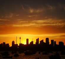 Calmness over Sydney  by Samantha  Goode