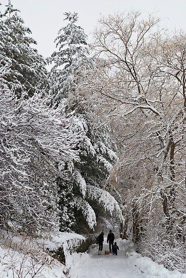 A Family Walk Along a Snowy Farm Lane  by MarkEmmerson