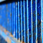 Blue Banister by J.  Roberts