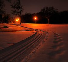 Ski Trail at Night by Geoffrey
