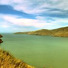 New Zealand lake by Aneurysm