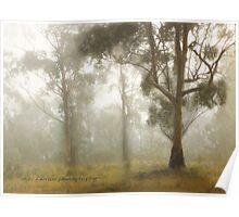 Wilberforce Morning Mist © Vicki Ferrari Poster