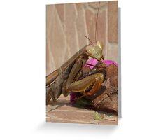 Mantis Religiosa: The Praying Mantis Greeting Card