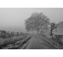 Morning Constitutional [BW] Photographic Print