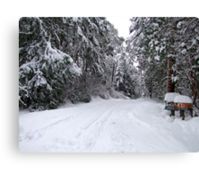 My Snowy Road Canvas Print