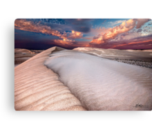 Dune Beauty Canvas Print