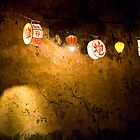 Lanterns, Full Moon Festival, Hoi An, Vietnam by Plonko