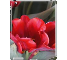 LUSCIOUS SOFT RED TULIPS iPad Case/Skin
