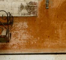 MERCHANT OF VENICE - A Random Alley Sticker