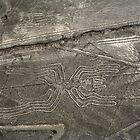 nazca spider by Colinizing  Photography with Colin Boyd Shafer
