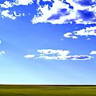 Cloudberry by Craig Shillington