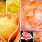 Roses All The Way- Collage by naturelover