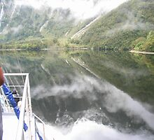 Reflections on Doubtful Sound by kbend
