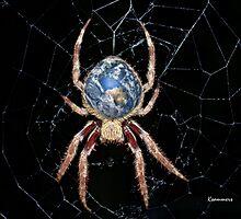 Earth Spider by StarKatz