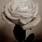 Vintage Rose by EseffpeArt