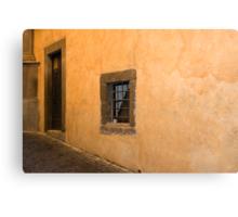 Small window Canvas Print
