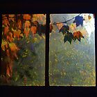 Autumn in my window by Mykola