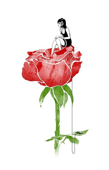 Rose by chetan adlak