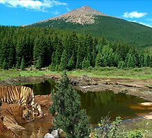 1100-Favorite Water Hole by George W Banks