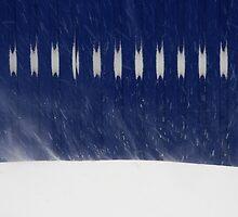 snow heartbeat by Nikolay Semyonov