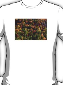 A Slice of Fall T-Shirt