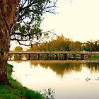 Bowlo Bridge at Lake Forbes by Amy Evans