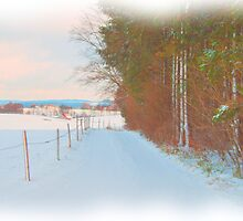Winter Lane by dmark3