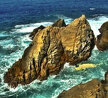 Ship Rock at Point Lobos by Wayne King