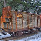 Ancient train wagon of the &quot;Train des Pignes&quot; (train of pine nuts) by jean-louis bouzou