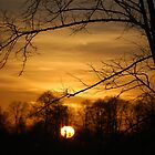 Grand Union Canal Sunset by Englandken