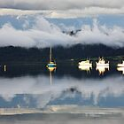 Boats on the Tamar - Tamar River, Tasmania by Ruth Durose
